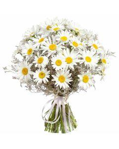 Pure & Pristine Daisy Bouquet