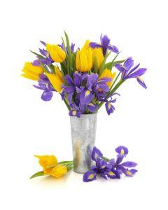 Bursting Beauty Iris Bouquet