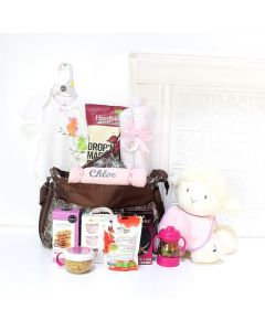 HI BABY! MEET YOUR PARENTS GIFT SET, baby girl gift basket, welcome home baby gifts, new parent gifts