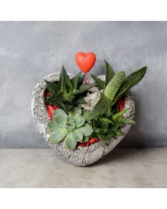 Rock Garden Succulents of Love, floral gift baskets, gift baskets, succulent gift baskets