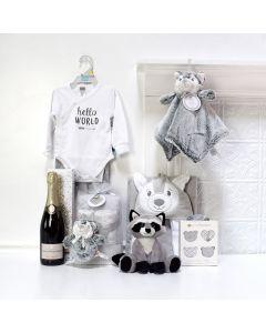 Unisex Baby Celebration Set, baby gift baskets, baby boy, baby gift, new parent, baby
