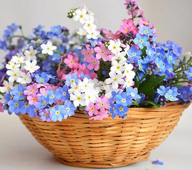 Flowers Baskets Delivered to LA